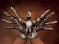 28 de Octubre 2011…Profecía Hopi. Documentalpolémico